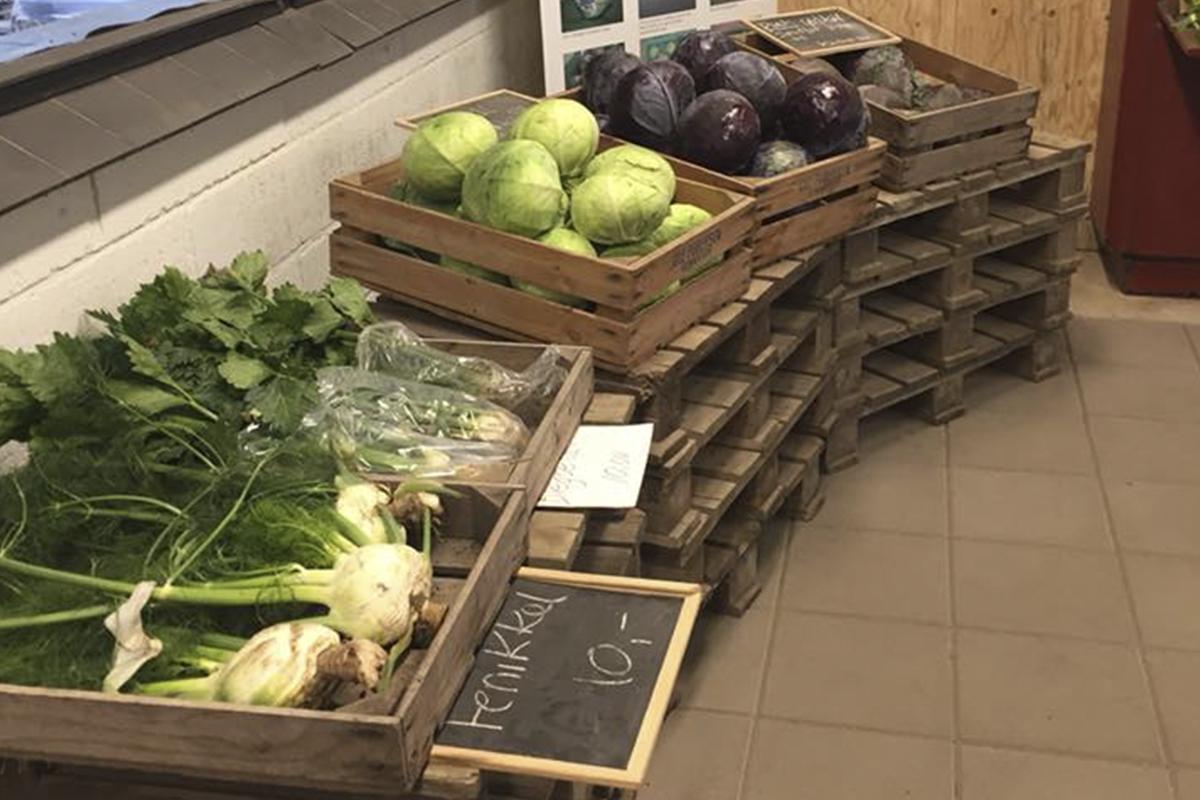 Gårdbutik Vemmelev, sortiment af grønsager